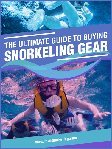 Ultimate Guide Snorkeling Gear